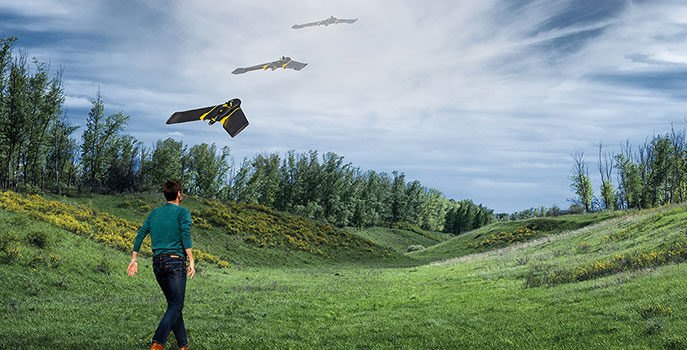 Unmanned Aerial Vehicle (UAV) Technology in a Forestry Management Environment