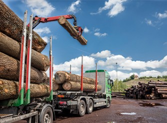 Solutions for log processing companies